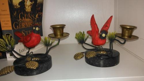 Her January cardinals