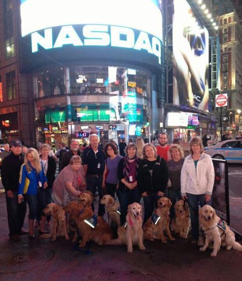 Some of the LCC K-9 Comfort Dogs in New York on their way to Boston