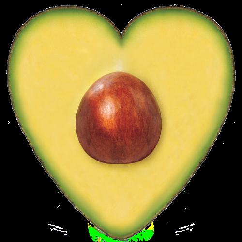The-Heart_R