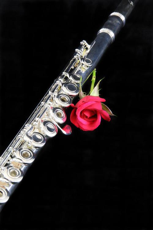 silver-flute-red-rose-m-k-miller
